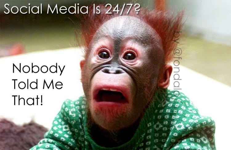 socialmedia247